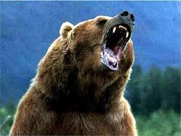 Grizzly Roar